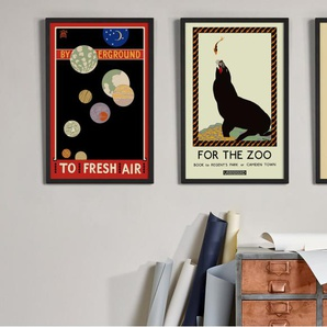For the Zoo book to Regents Park, gerahmter Kunstdruck