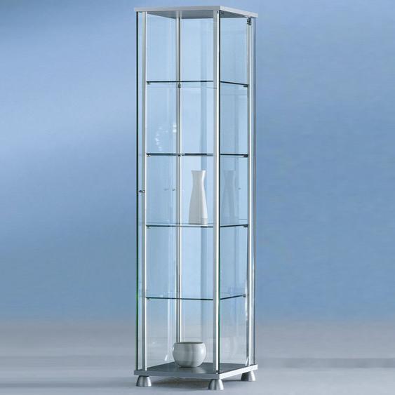 FORUM Glasvitrine mit Fl�gelt�r b43xt43xh176cm