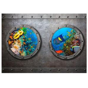 Fototapete Blick in die Unterwasserwelt