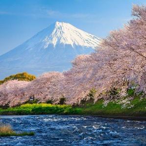 PAPERMOON Fototapete »Fuji and Sakura«, Vlies, in verschiedenen Größen