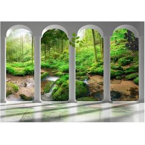 Fototapete Säulen und Wald
