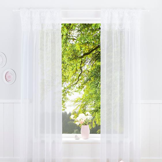 Gardine »JASMIN«, 130x125 cm (BxH), Home affaire, transparent, Material Microfaser