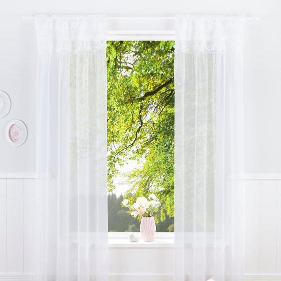 Gardine »JASMIN«, 130x225 cm (BxH), Home affaire, transparent, Material Microfaser