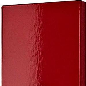 GERMANIA Garderobenpaneel Colorado, in vielen verschiedenen Farben B/H/T: 15 cm x 170 4 rot Garderobenpaneele Garderoben
