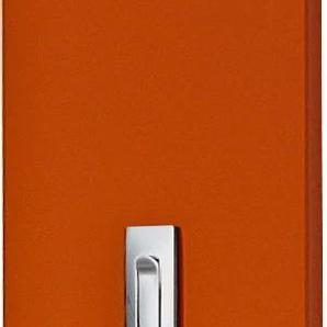 GERMANIA Garderobenpaneel Colorado, in vielen verschiedenen Farben B/H/T: 15 cm x 170 4 orange Garderobenpaneele Garderoben