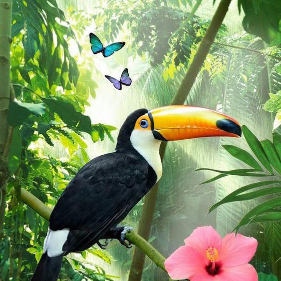 good morning Strandtuch »Rainforest« (1-St), mit Tukan