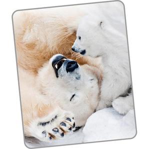 Good Morning Wohndecke »Cute Bear«, 130x160 cm, bunt