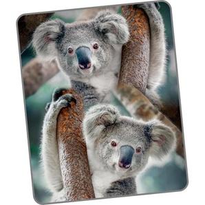 Good Morning Wohndecke »Koala«, 130x160 cm, bunt