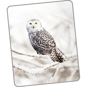 Good Morning Wohndecke »Snowy Owl«, 130x160 cm, bunt
