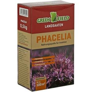 Greenfield Landsaat Phacelia 0,5 kg