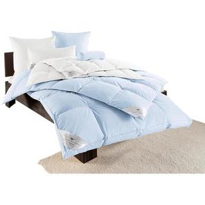 Häussling Bettdecke Extra warm Füllung: weiß Allergiker Bettdecken Bettdecken, Kopfkissen Unterbetten Decken