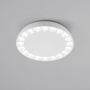 Helestra Pair LED Deckenleuchte