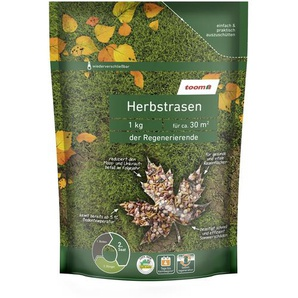 Herbstrasen Der Regenerierende 1 kg
