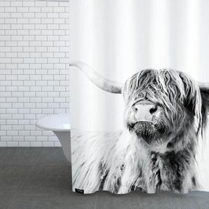 Highland Cattle Frida 2 - Duschvorhang
