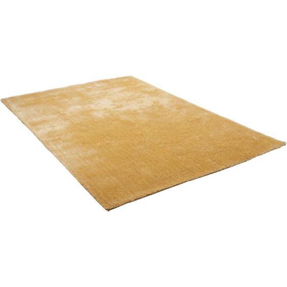Hochflor-Teppich »Alessandro«, THEKO, rechteckig, Höhe 25 mm, besonders weich durch Microfaser, Wohnzimmer