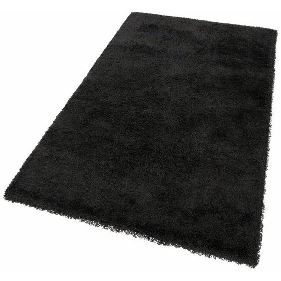 Hochflor-Teppich »Denver«, merinos, rechteckig, Höhe 50 mm, Wohnzimmer