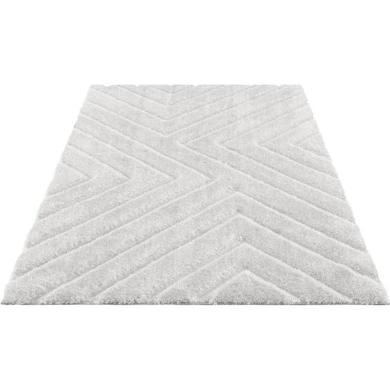Hochflor-Teppich, Fiori, andas, rechteckig, Höhe 43 mm, maschinell gewebt 8, 280x380 cm, mm beige Shaggy-Teppiche Hochflor-Teppiche Teppiche