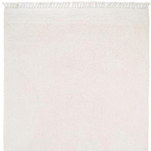 Hochflorteppich Ava Cream 160x230 cm