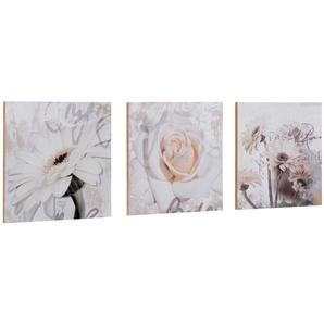 Home affaire Kunstdruck »S., D.: Gerberas Detail«, 3-tlg., je 29/29 cm
