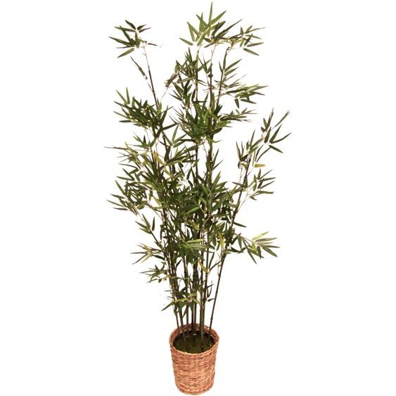 I.GE.A. Kunstpflanze Bambus (1 Stück) 45x45x150 cm grün Zimmerpflanzen Pflanzen Garten Balkon Kunstpflanzen