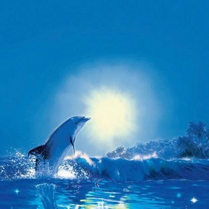 IDEALDECOR Türtapeten »Dolphin in the Sun«, 2-teilig, 86x200cm