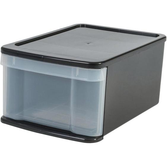 IRIS OHYAMA Aufbewahrungsbox »SDMP«, 11 Liter