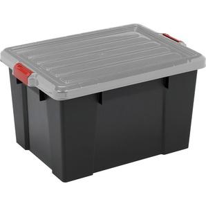 IRIS OHYAMA Aufbewahrungsbox »SK210«, 21 Liter