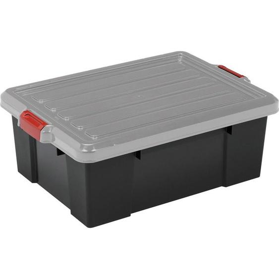 IRIS OHYAMA Aufbewahrungsbox »SK430«, 43 Liter