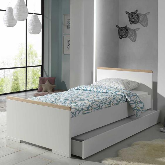 Jugendbettgestell in Weiß und Buche modern