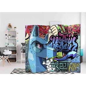 Jugendzimmer Paravent Graffiti Motiv 5 teilig
