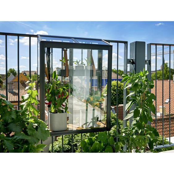 Juliana Balkon-Gewächshaus Urban Balcony schwarz 60 x 27 x 79 cm