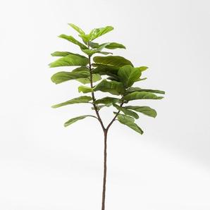 KARE Kunstpflanze ,Grün ,Kunststoff