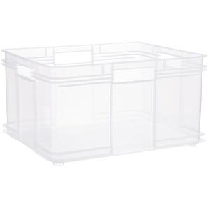 Keeeper Eurobox XXL transparent 40 l