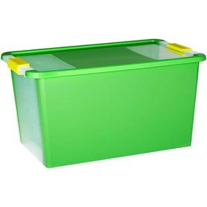 KIS Aufbewahrungsbox Bi Box L grün