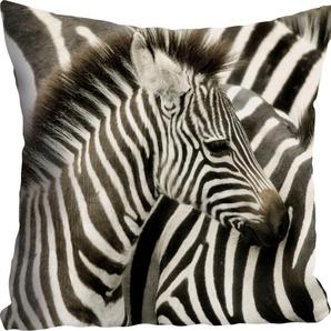 Kissenhülle »Richard«, queence (1 Stück), mit Zebra