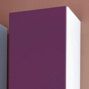 Kleiderschrank »Saragossa«, B/T/H 48/36/193 cm, Türanschlag rechts, lila