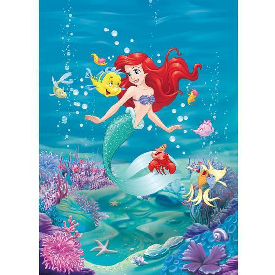 Komar Fototapete Ariel Singing 184 cm x 254 cm