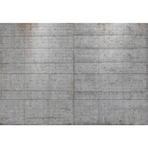 XXXL: Tapete, Grau, B/H 368 254