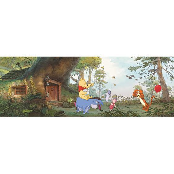 Komar Fototapete Disney Poohs House 368 cm x 127 cm