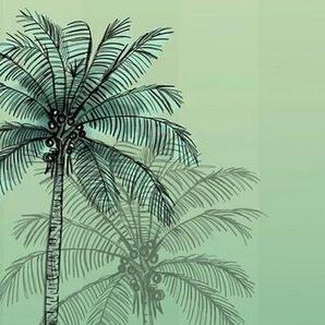 Komar Fototapete »Jungle Simba«, glatt, Comic, mehrfarbig, (Packung)