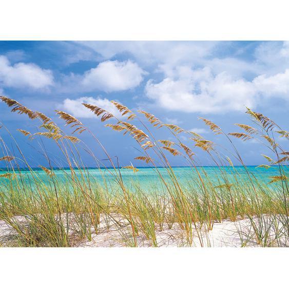 Komar Fototapete Ocean Breeze 368 cm x 254 cm