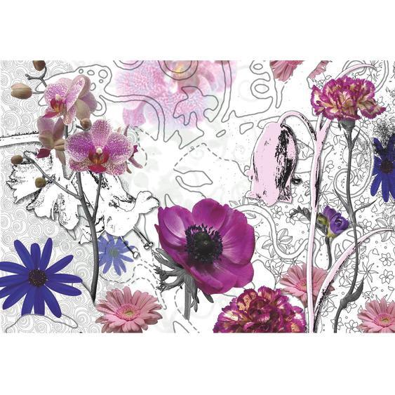 Komar Fototapete Purple 368 cm x 254 cm