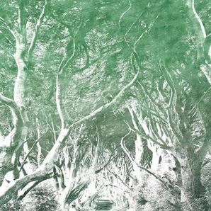 Komar Vliestapete »Alley Graphite«, glatt, naturalistisch
