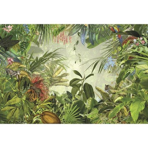 : Vliestapete, Mehrfarbig, B/H/T 368 248 cm