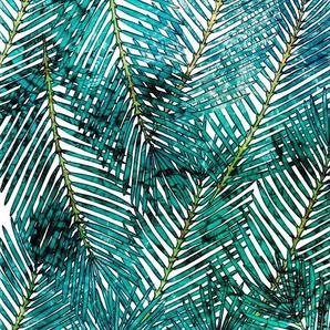Komar Vliestapete »Pure Palm Canopy«, glatt, naturalistisch