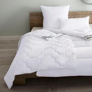 Bettdecken Aus Polyester Preisvergleich Moebel 24