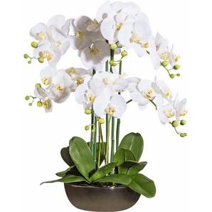 Deko Orchidee in Keramikschale, ca. 60 cm hoch