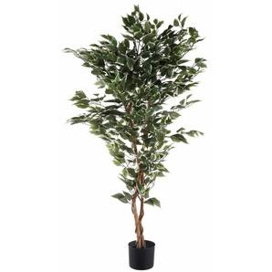 Kunstpflanze »Ficus Benjamini« Ficus Benjamini, Creativ green, Höhe 150 cm