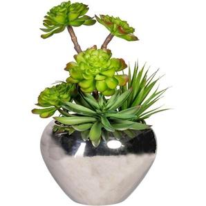 Künstliche Zimmerpflanze »Sukkulenten«arrangement, ca. 35 cm