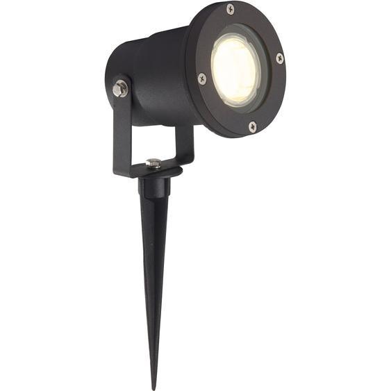 LED-Außenleuchte Janko mit Erdspieß Schwarz EEK: A+
